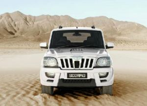 white scorpio in desert
